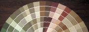 toned-down paint color choices
