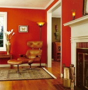 bold red paint shades