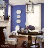 cobalt blue walls are not for the faint of heart