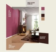 getting ideas for wall paint colors