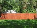 Fence after staining