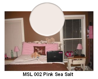MSL Pink Sea Salt paint color
