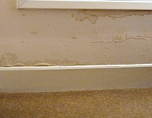 Unsealed gaps around exterior trim can lead to water damage