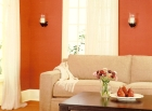 choosing bold paint hues