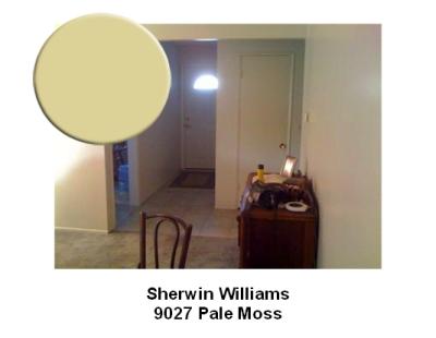 SW 9027 Pale Moss