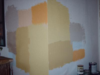Help me choose a paint color...