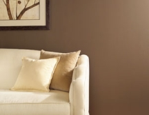 Flat interior paint finishes