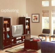 neutral paint colors are necessary in a home