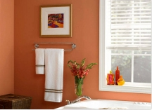 Orange color idea for painting a bathroom