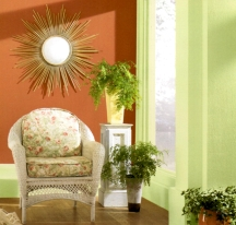 Clay pot shades of orange make a timeless wall paint color