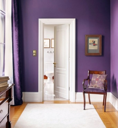 Violet wall paint color with yellow flooring