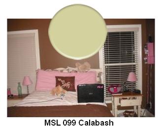 MSL Calabash paint color