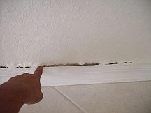 Caulking and painting should go hand in hand