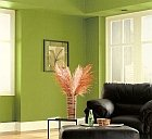 choosing a paint color for sunny rooms