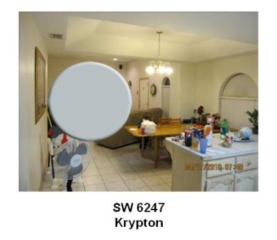 SW Krypton paint color