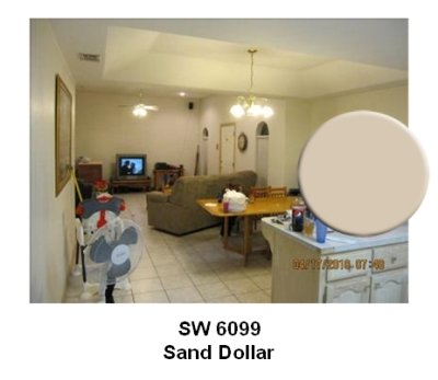 SW Sand Dollar paint color