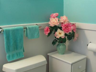 Turquoise paint color on my bathroom walls