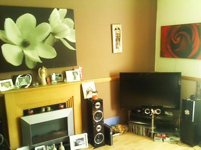Living room focal wall